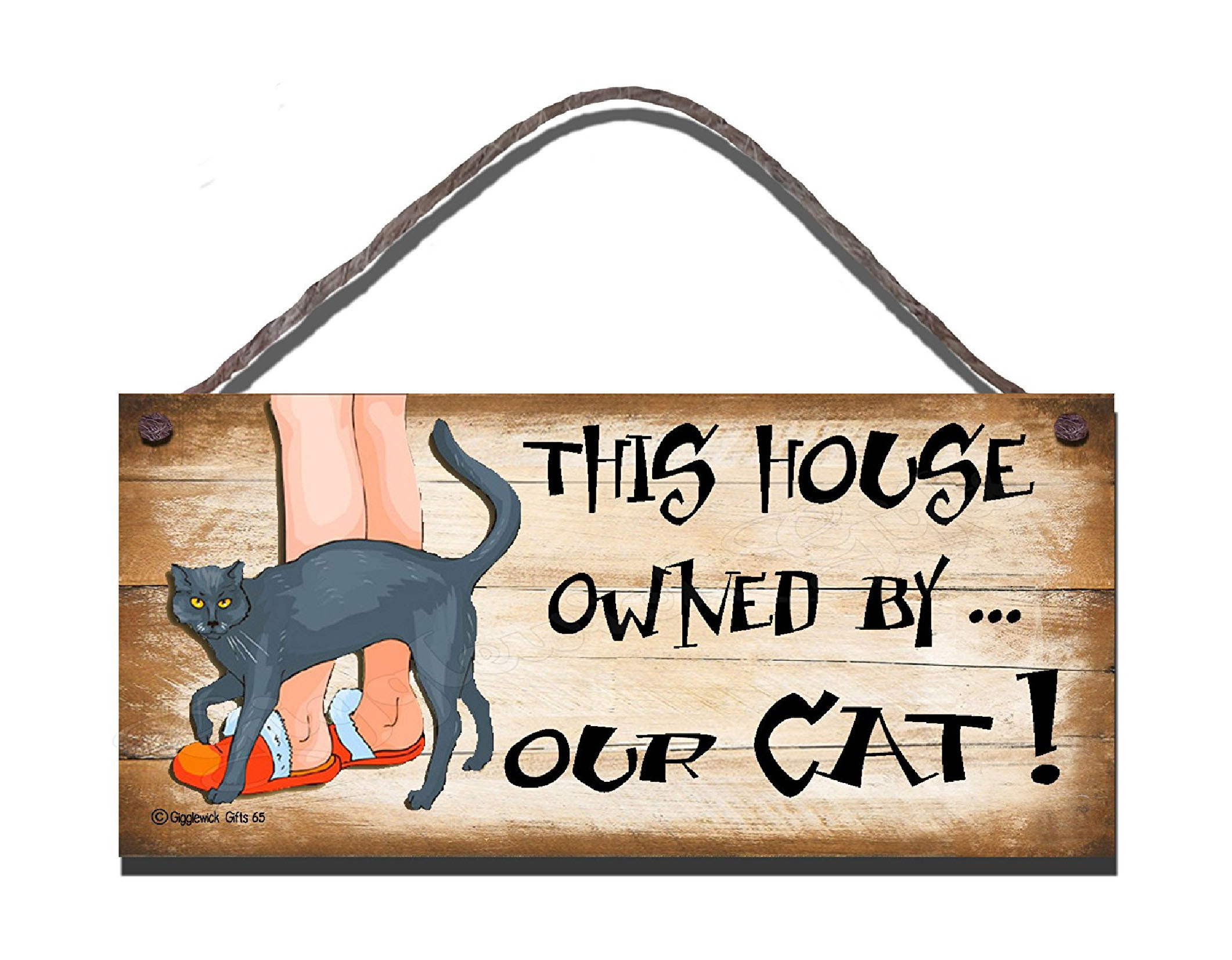 HOUSE OWNED BY CAT S65